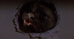 A vicious black cat from Two Evil eyes (1990)