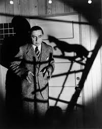 Lugosi in The Black Cat (1932)